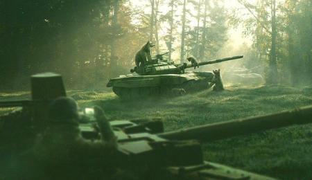 Десантники заблудились в лесу